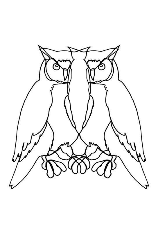Owl Lines -Alubild