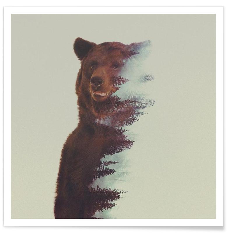 Bären, Waldbär-Doppelbelichtung -Poster