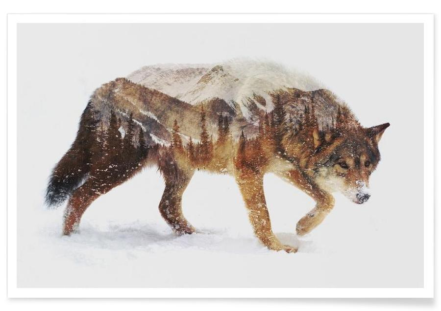 Wolven, Noordpoolwolf double exposure poster