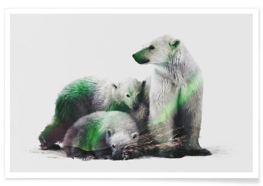 Beren, Arctische ijsberen double exposure poster