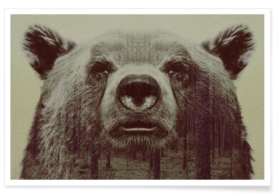 Bären, Bjørn-Bär-Doppelbelichtung -Poster