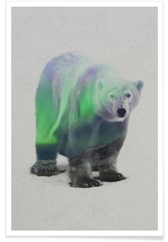 Bären, Polarbär-Doppelbelichtung -Poster
