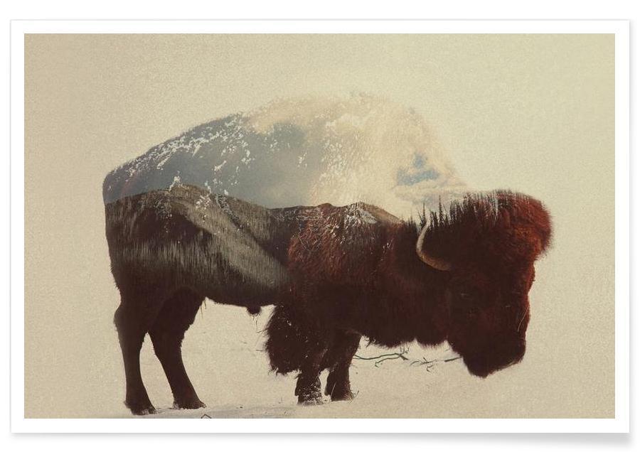 Buffalos, Buffalo Double Exposure Poster