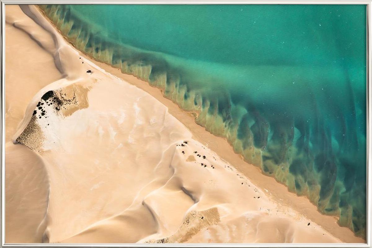 Shark Bay 3 -Poster im Alurahmen