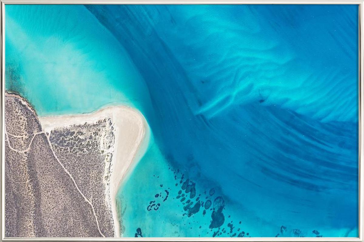 Shark Bay 5 -Poster im Alurahmen