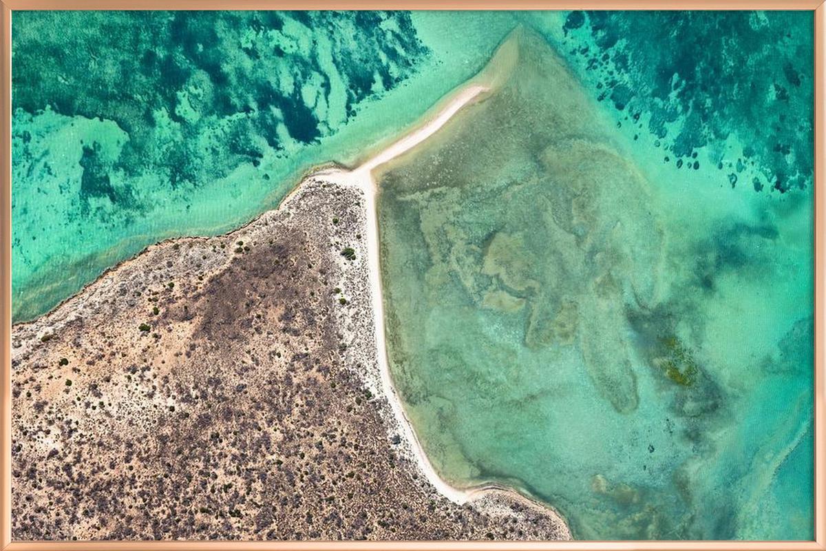 Shark Bay 8 -Poster im Alurahmen