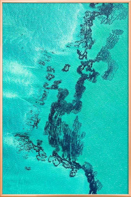 Shark Bay 13 -Poster im Alurahmen