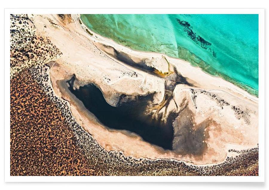 Shark Bay 14 -Poster
