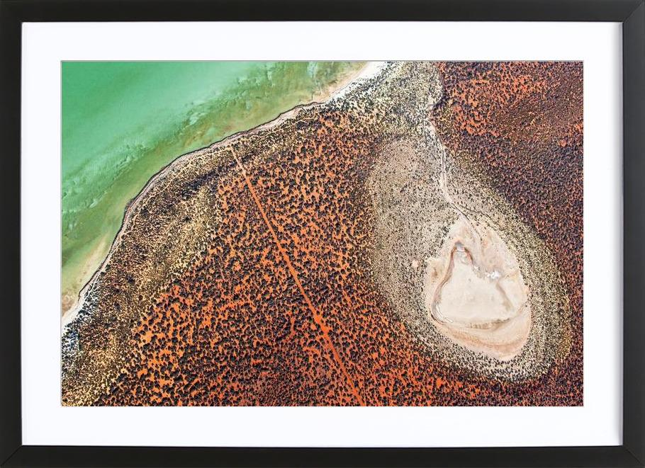 Shark Bay 18 -Bild mit Holzrahmen