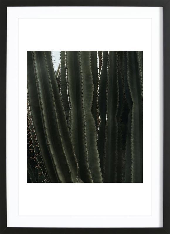 Cactus 01 ingelijste print
