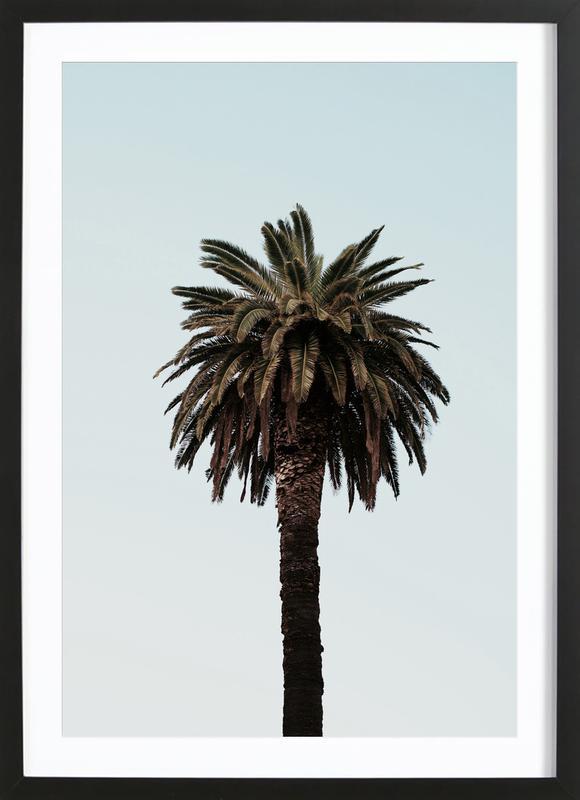 Palmtree Framed Print