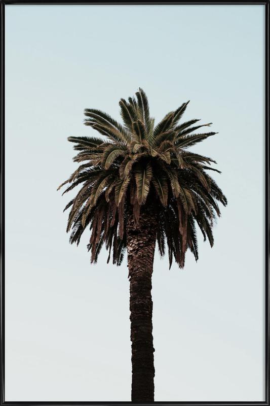 Palmtree ingelijste poster