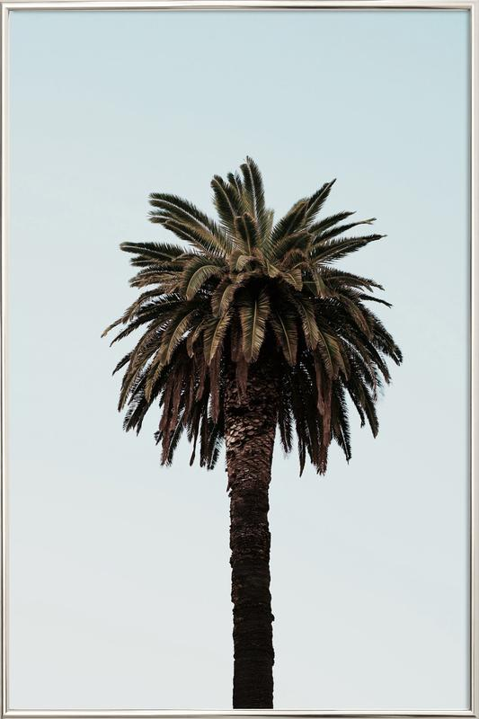 Palmtree Poster in Aluminium Frame