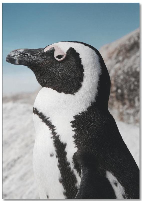 Pingouins, Penguin bloc-notes