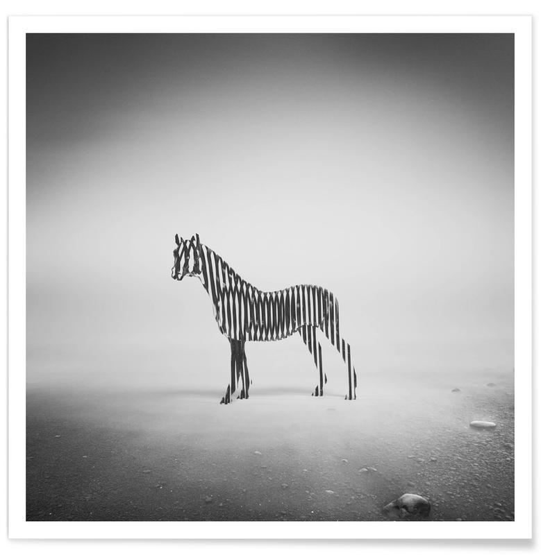 Noir & blanc, Zèbres, Zebra Mist affiche
