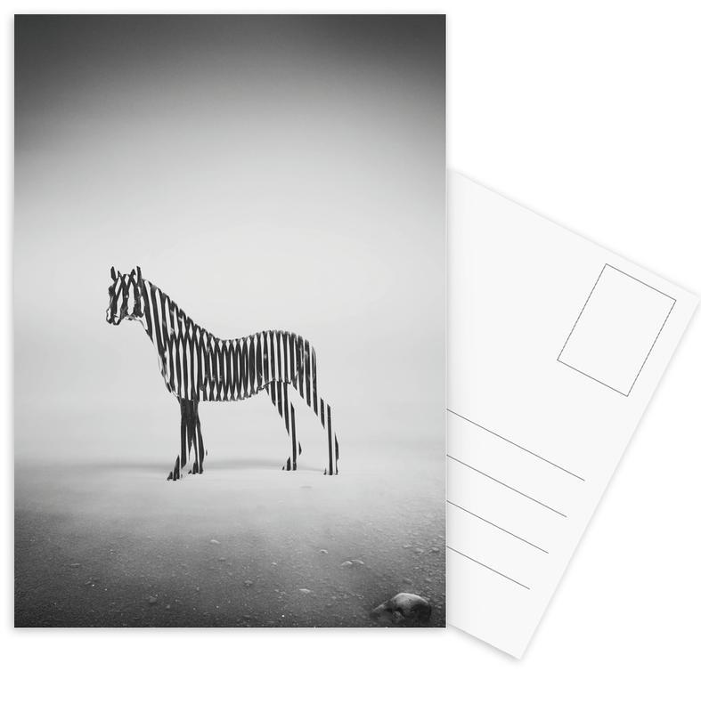 Schwarz & Weiß, Zebras, Zebra Mist -Postkartenset