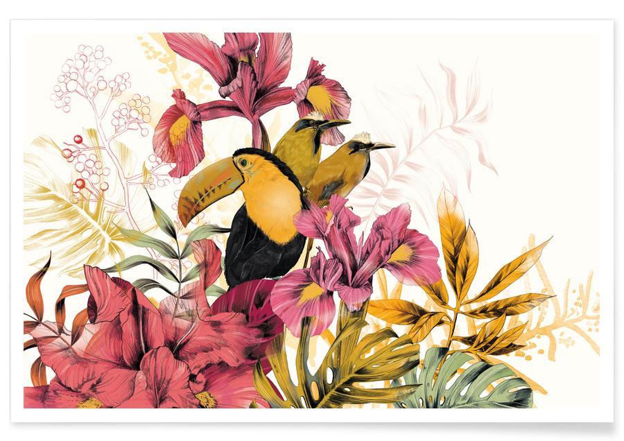 Toucans, Tropical Garden Toucan affiche