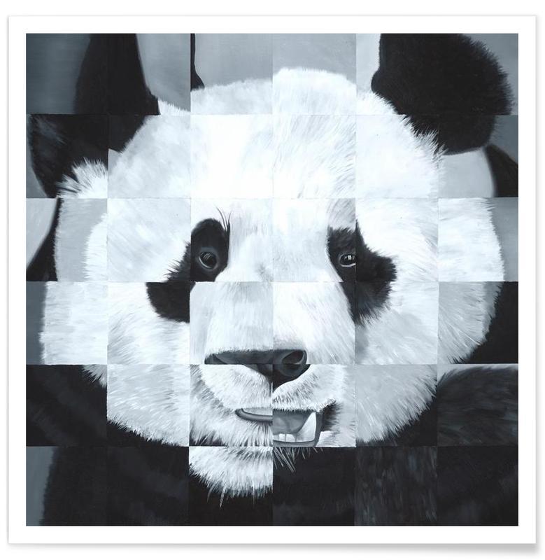 Noir & blanc, Pandas, Panda affiche