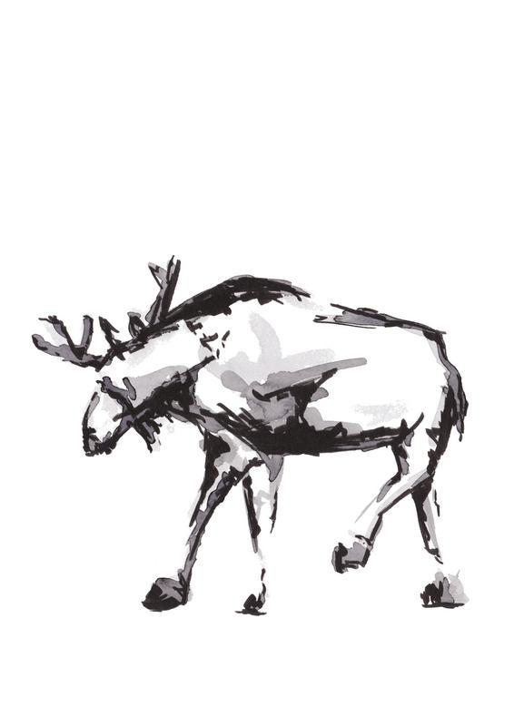 Elk -Leinwandbild