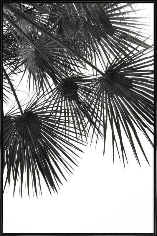 Endless Summer - Wind ingelijste poster