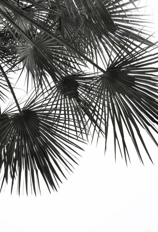Endless Summer - Wind -Acrylglasbild