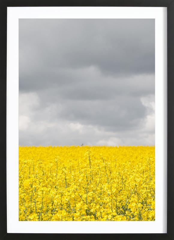 Grey Sky Meets Yellow Fields ingelijste print