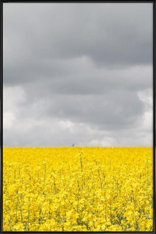 Grey Sky Meets Yellow Fields ingelijste poster