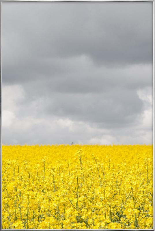 Grey Sky Meets Yellow Fields poster in aluminium lijst