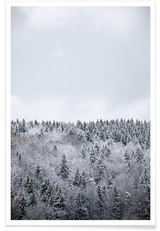 White Winter Forest Poster