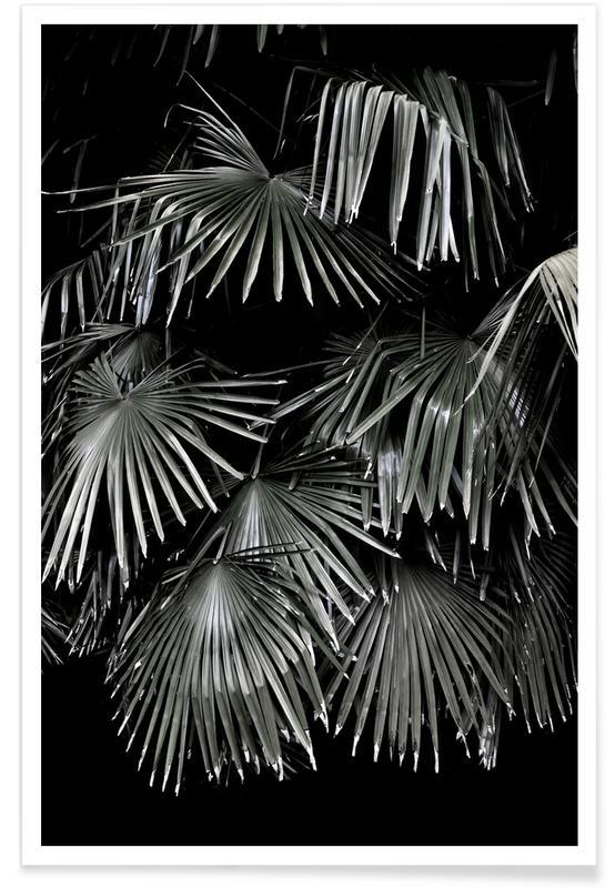 Tropical Garden 5/5 Poster
