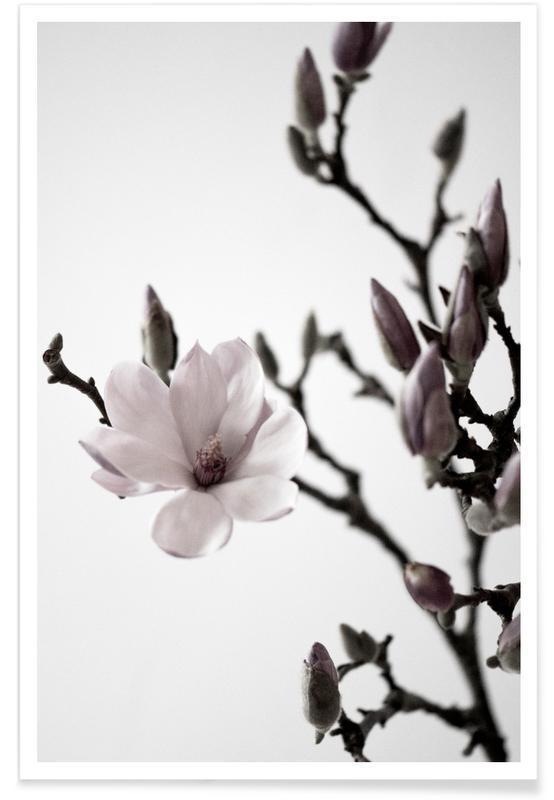 Magnolia Happiness affiche