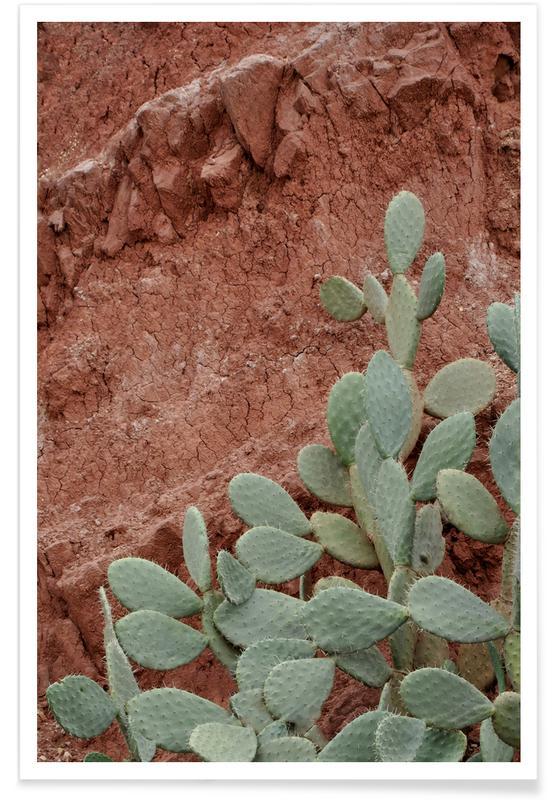 Desert Mood Poster