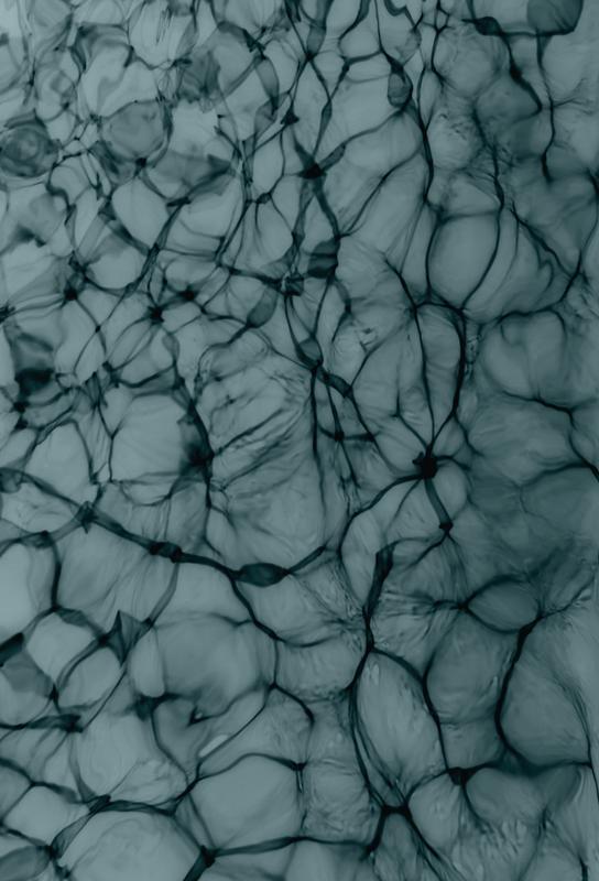 Abstract Life Impression sur alu-Dibond
