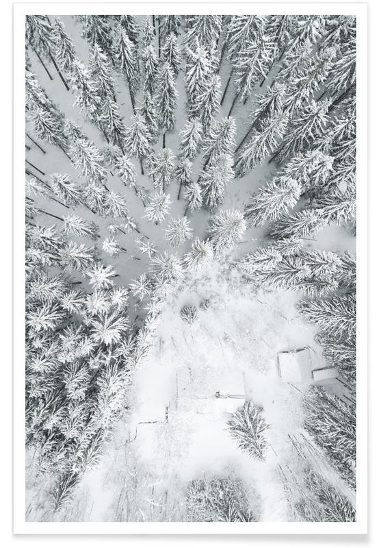 Calm Winter affiche