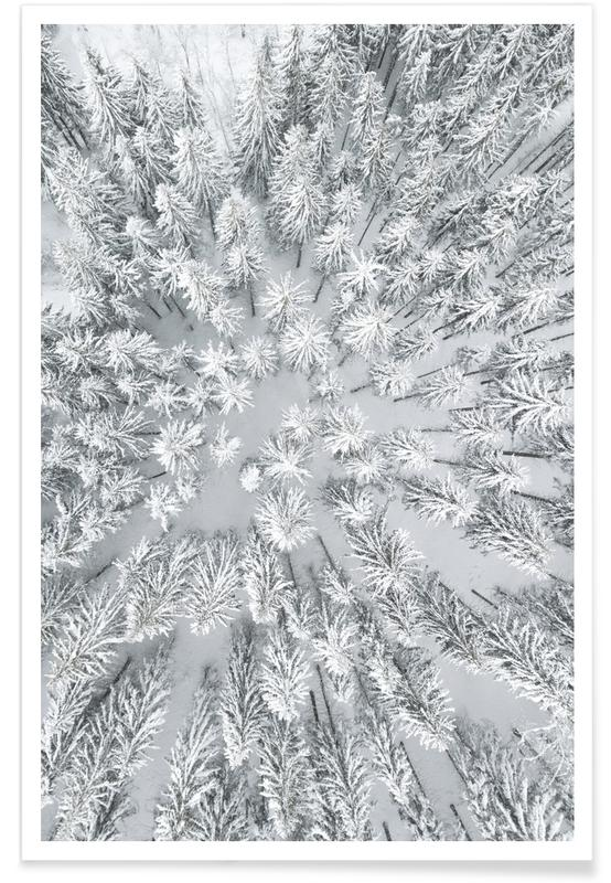 Forests, Snowy Forests Poster