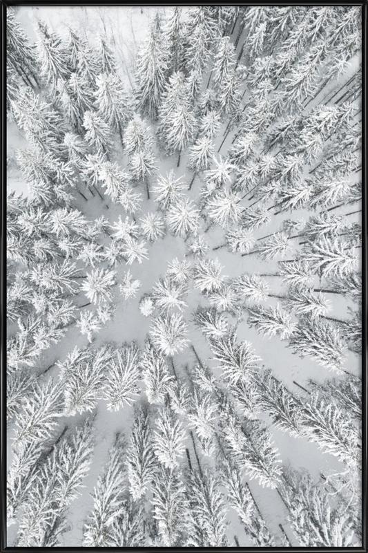 Snowy Forests affiche encadrée