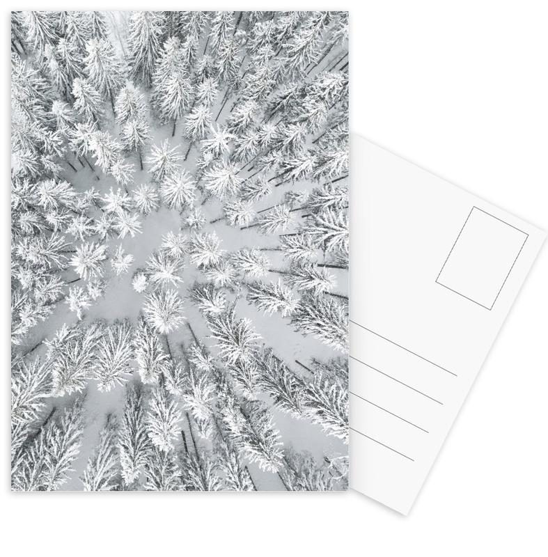 Snowy Forests Postcard Set