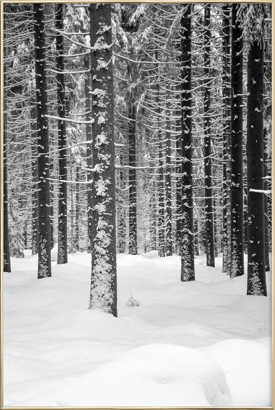 Deep Dark White Forest affiche sous cadre en aluminium