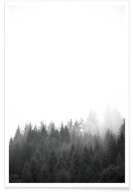 Walk Through The Forest affiche