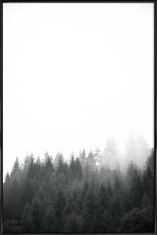Walk Through The Forest -Bild mit Kunststoffrahmen