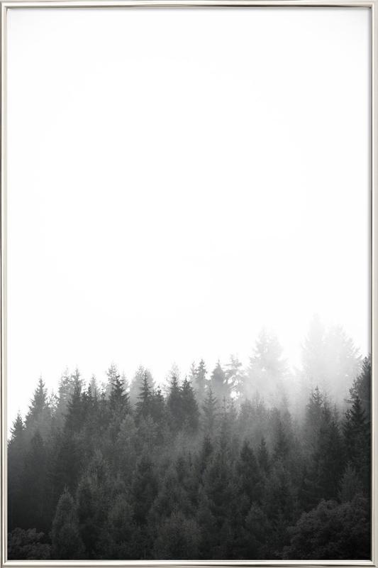 Walk Through The Forest -Poster im Alurahmen