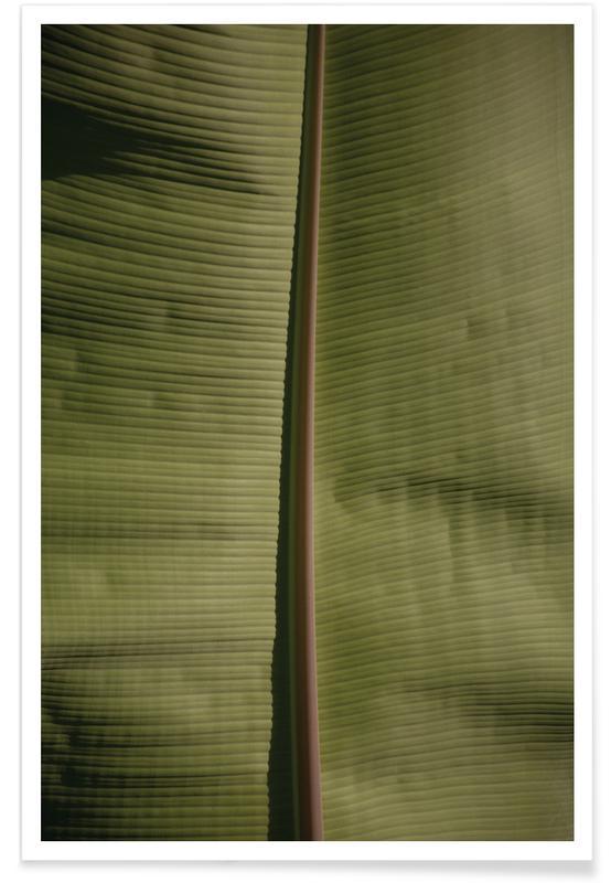 Tropical Banana poster
