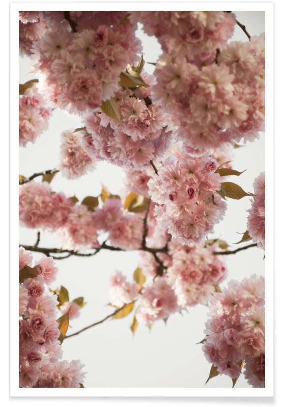 Blush Spring Love Poster