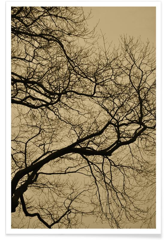 Arbres, Golden Houre Abstract Branches affiche