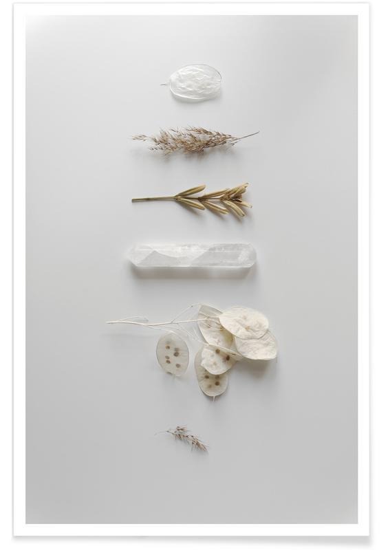 Feuilles & Plantes, Stones & Branches 1 affiche