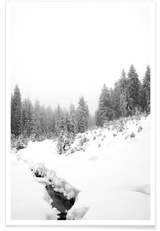 Bossen, Black River, White Winter Forest poster