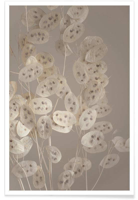 Leaves & Plants, Cream Grey Confetti Plant Poster