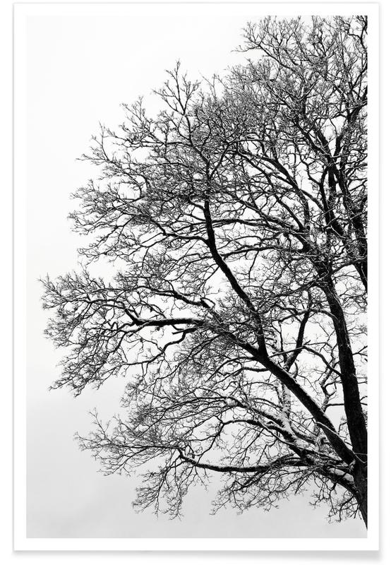 Arbres, Black & White Abstract Winter Tree affiche