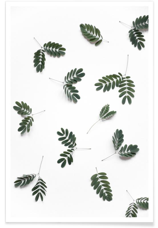 Arbres, Feuilles & Plantes, The Beauty of Mother Nature affiche