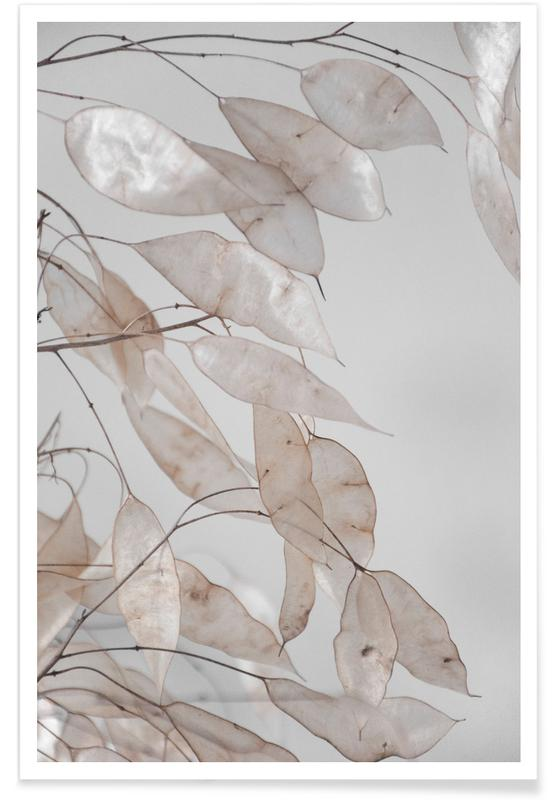 Arbres, Forêts, Feuilles & Plantes, Abstract Branches Collected in the Forest affiche
